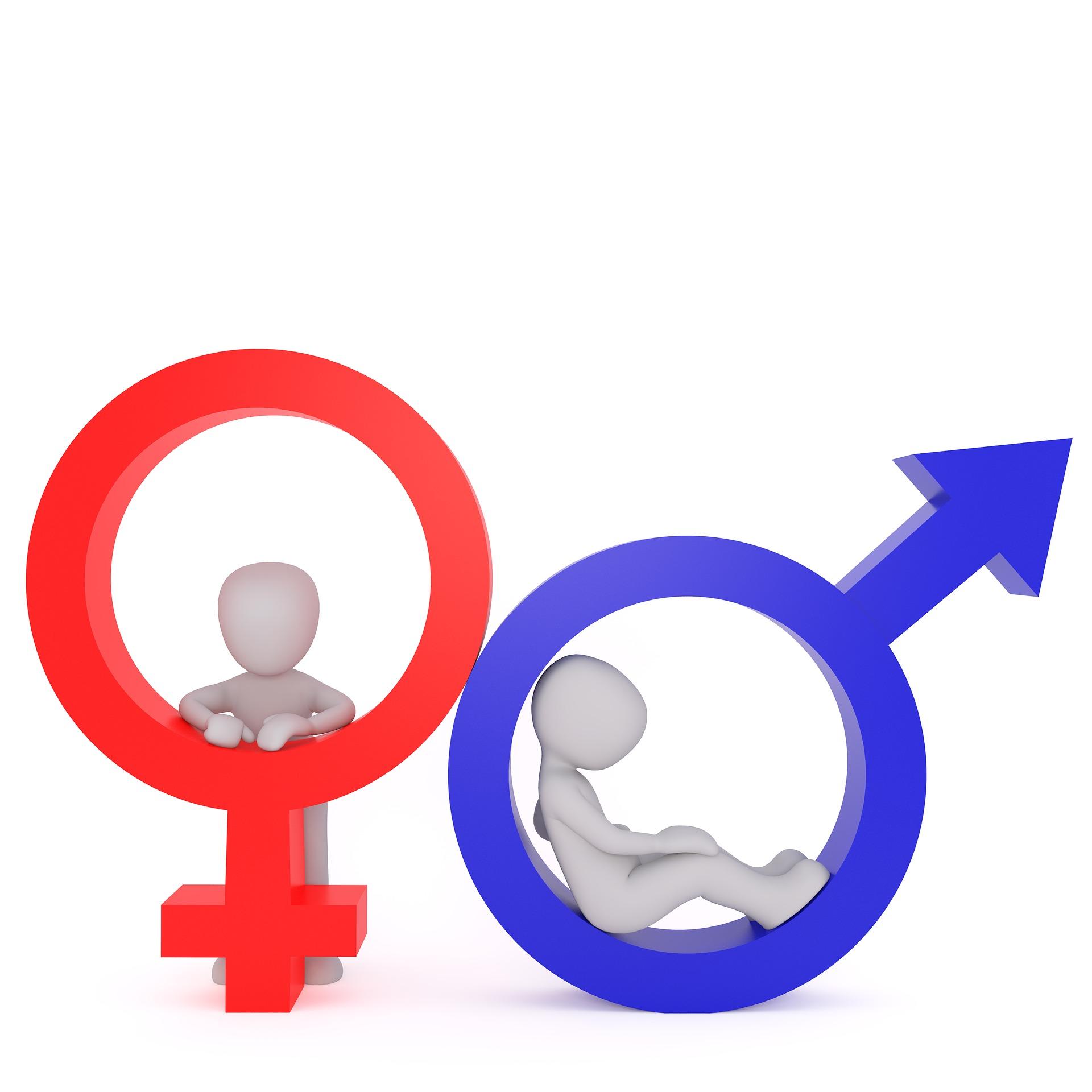Männlich Weiblich Divers Bundesverband Farbe